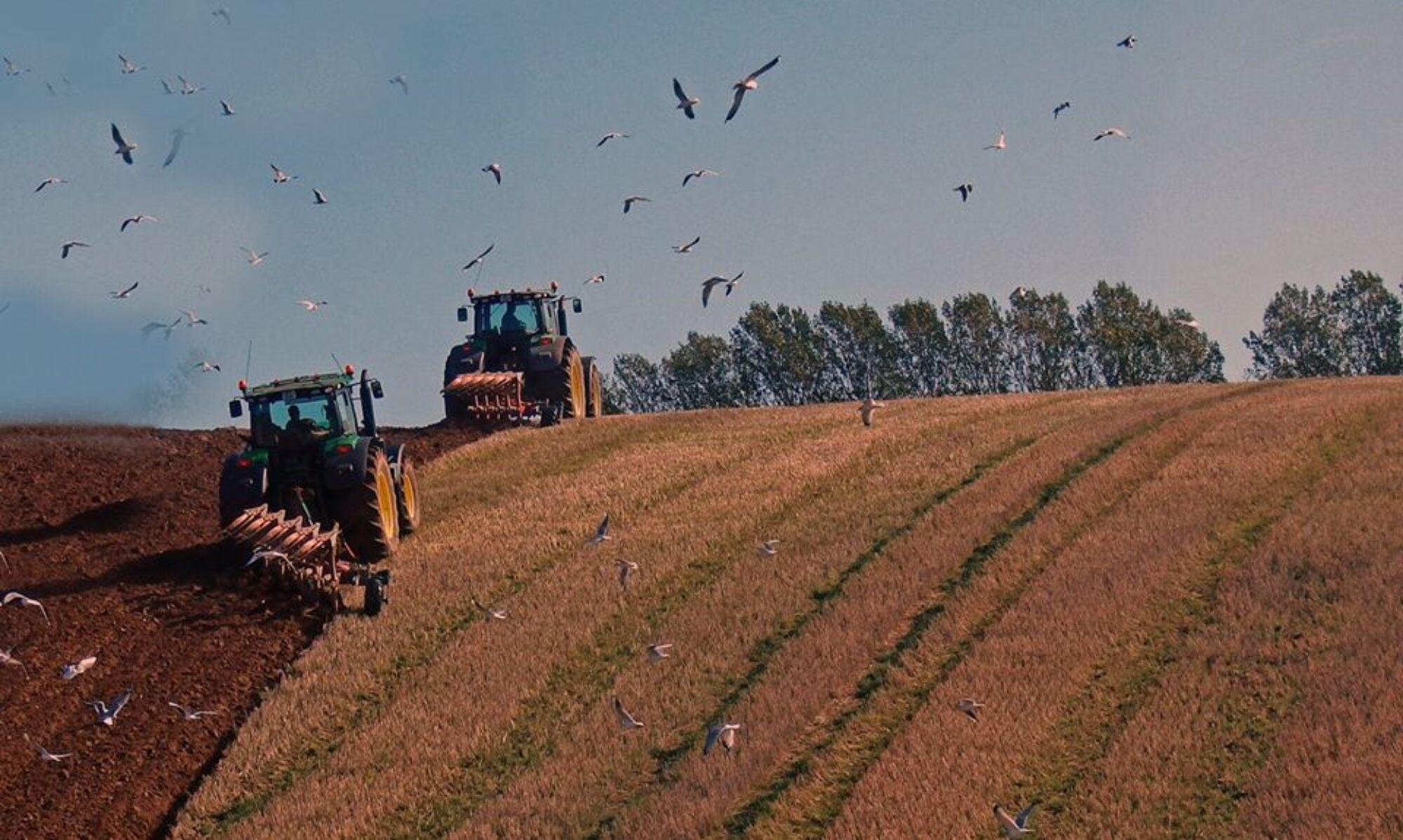 Erhverv & Landbrug på Tuse Næs
